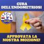 Cura dell'endometriosi: approvata la nostra mozione!
